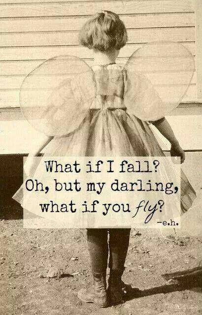 fall ro fly